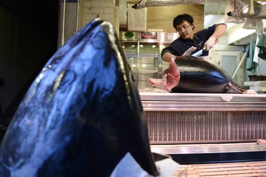 Bigeye tuna prices expected to rise by end of year the for Tuna fish price