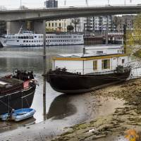 Shipping fears as Rhine falls to lowest level in 40 years