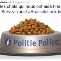 Belgians tweet cat pictures in following orders not to reveal police action