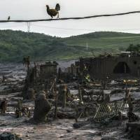 28 missing in Brazil dam disaster probably dead, governor says