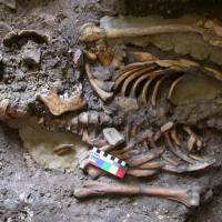 Genetic sleuthing helps sort out complex ancestry of modern Europeans
