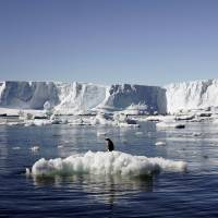 'Unstoppable' West Antarctic ice melt threatens to raise sea levels by 3 meters: scientists