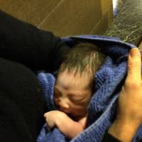 Hours-old boy, with umbilical attached, abandoned in Queens nativity scene