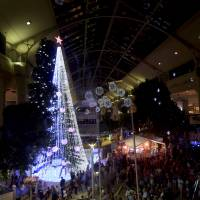 Australian sets Christmas tree record with 518,838 lights