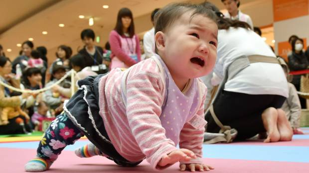 Babies crawl and bawl to finish line in Japan race