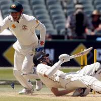 Australia wraps up win over New Zealand in historic day-night test