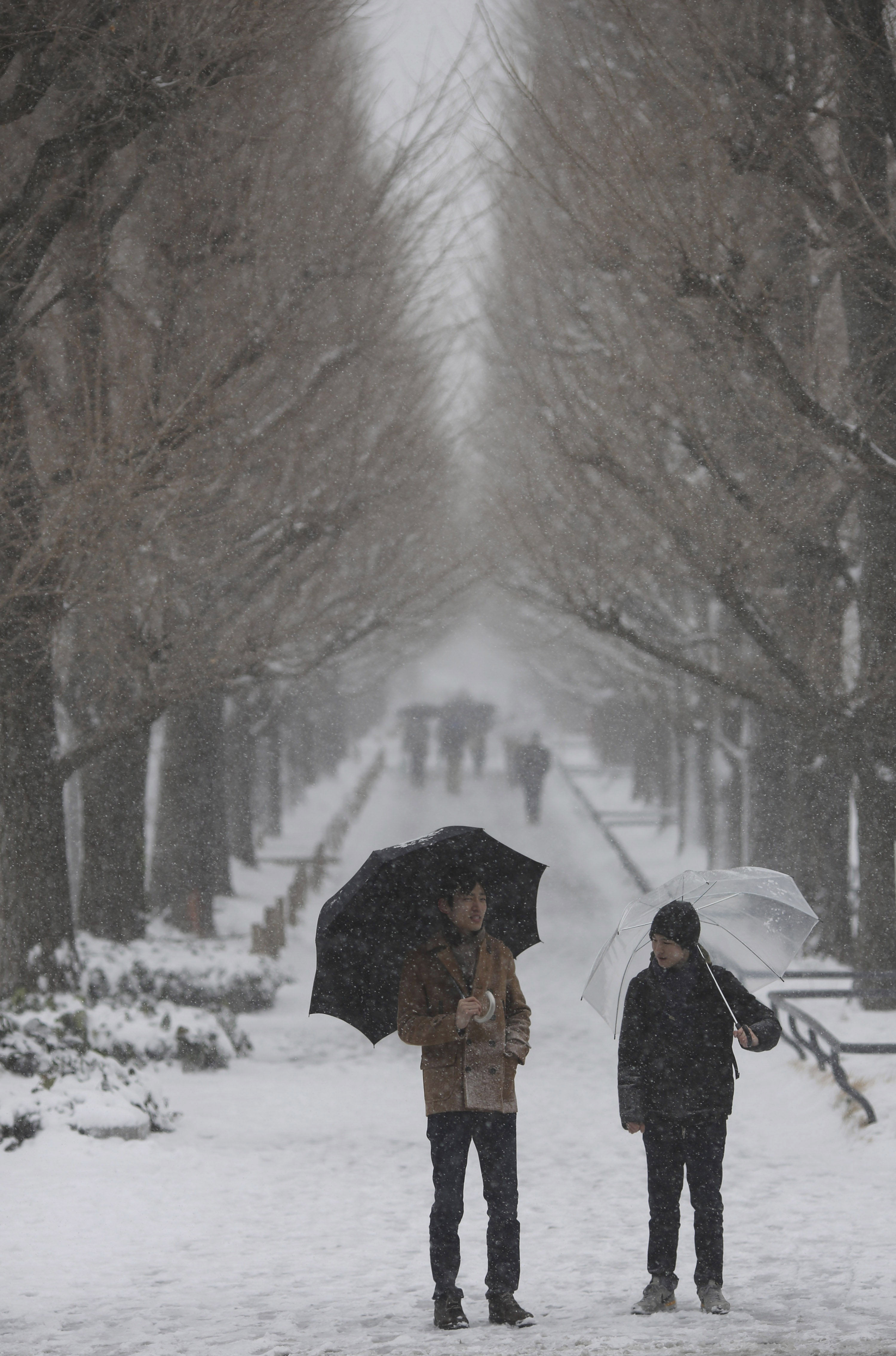 Five Dead, More Than 600 Injured As Heavy Snow Hits Japan