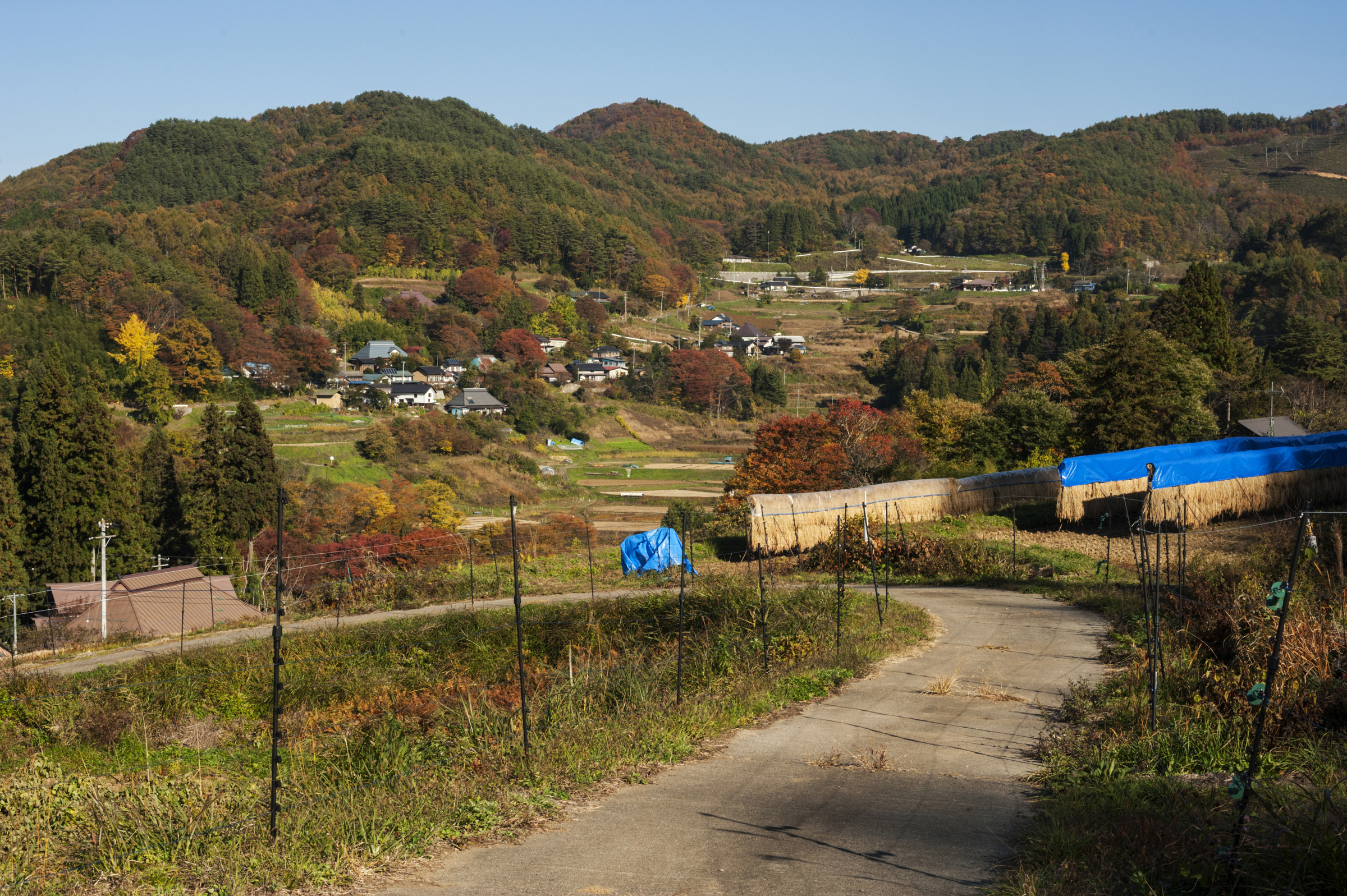 Looking across the valley at the hamlet of Yonedawa from fields in Keishi.
